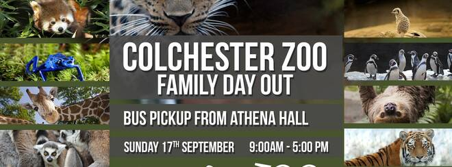 Colchester Zoo Trip – Family Day out