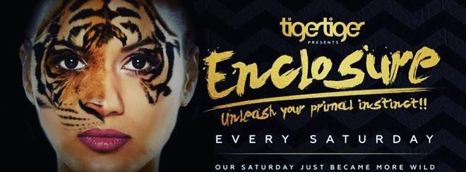 Enclosure Saturdays!