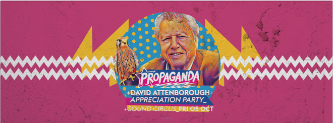 Propaganda Bournemouth – David Attenborough Appreciation Party!