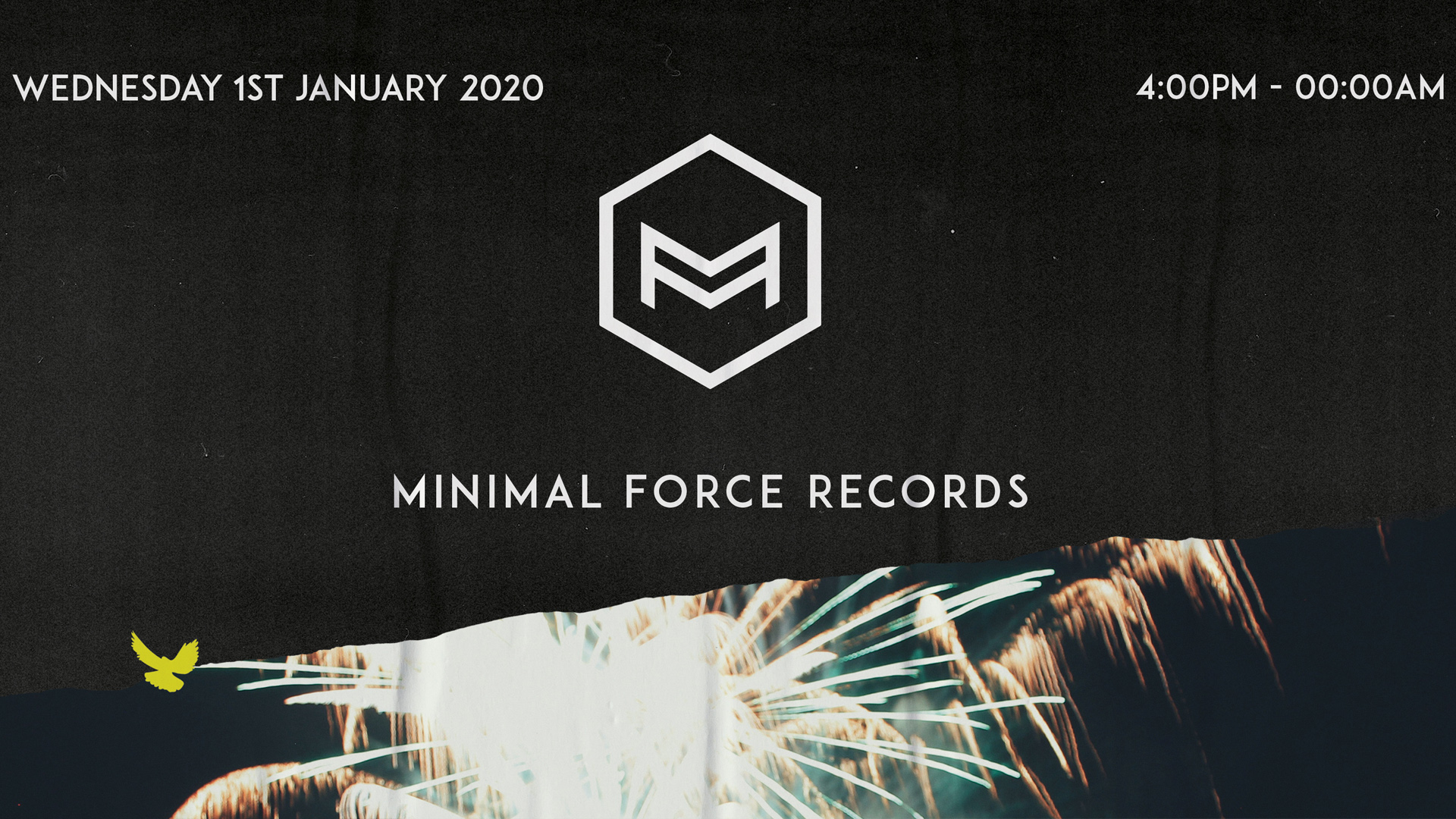 Minimal Force NYD