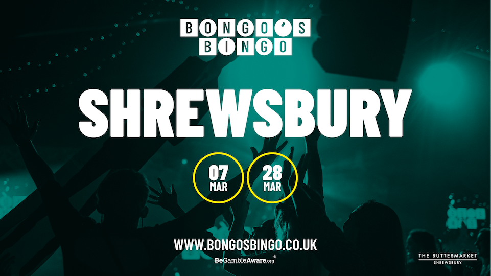 Bongo's Bingo – SOLD OUT
